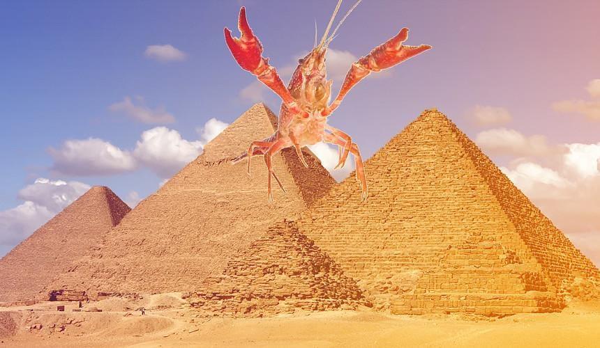 Туроператоры отреагировали на неготовность Минтранса возобновить чартеры в Египет-Новости туризма в России и мире
