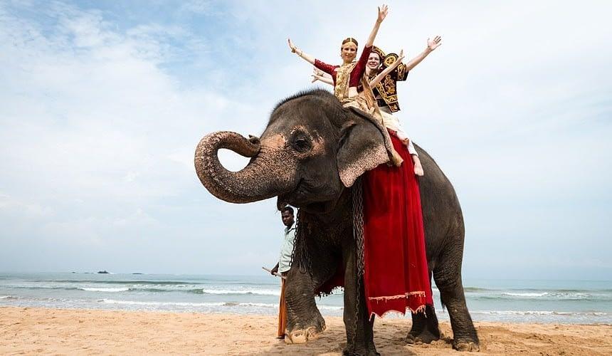 Решение оперштаба по Шри-Ланке. Реакция авиакомпаний по данному направлению-Новости туризма в России и мире