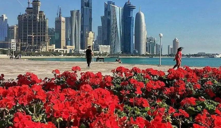 Катар сообщили подробности по условиям въезда в страну-Новости туризма в России и мире